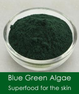 blue green algae for the skin